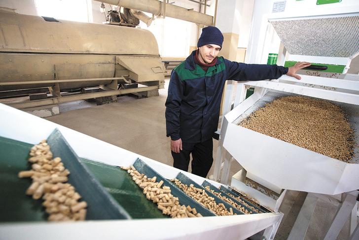 В Свердловской области завершено создание нового деревоперерабатывающего производства