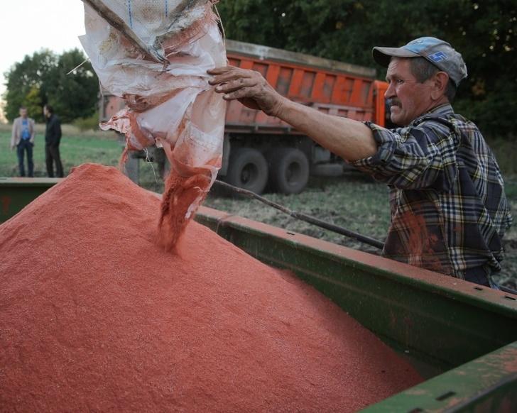Аграрии на 10,7% увеличили закупки минеральных удобр&#133;                                          <br/>( <a href=
