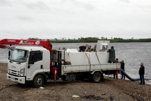 Зарыбление водоемов России
