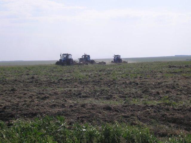 В Пензенской области введено в оборот почти 10 тыс. га неиспользуемых земель