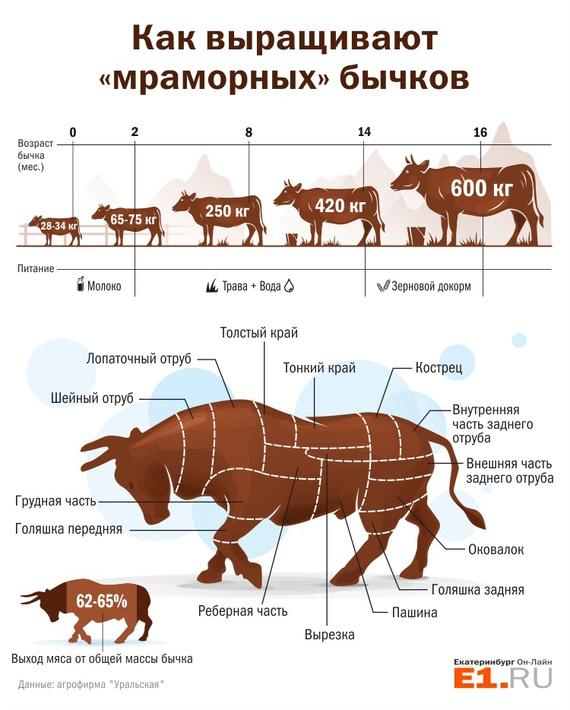 Мраморное мясо  takprostocc