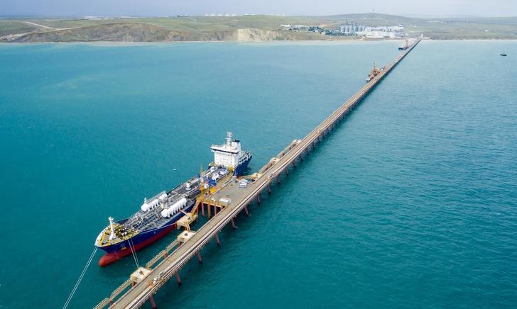 Россия возобновляет экспорт подсолнечного масла в Марокко