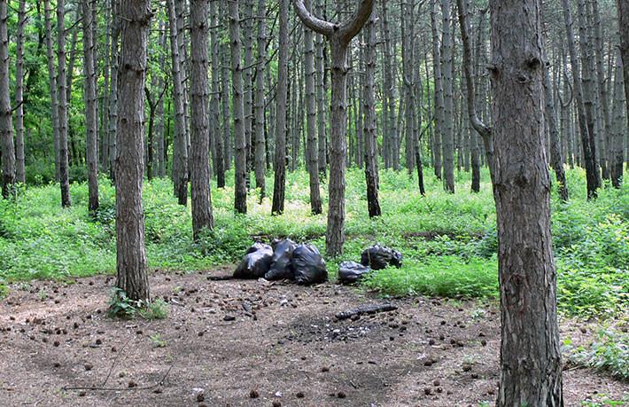 Собраный и подготовленый к вывозу мусор в ростовской роще. Фото – Ян Ижогин
