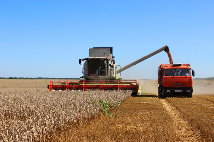 уборки озимой пшеницы в Гиагинском районе Адыгее июль 2016 год