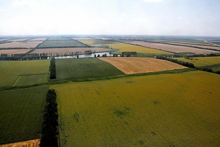 Краснодарский край урожай-2015