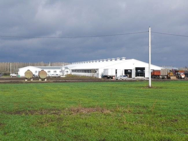 семейные фермы в селе Елец-Лозовка Хлевенского района (октябрь 2013 г.)