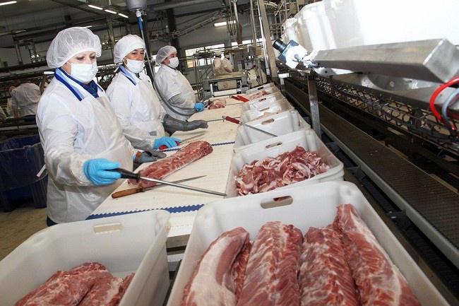 Картинки по запросу АгроПромкомплектация мясопереработка