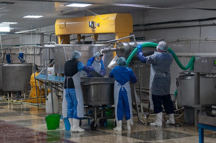 В Тамбовской области открыт перерабатывающий молочный кооператив