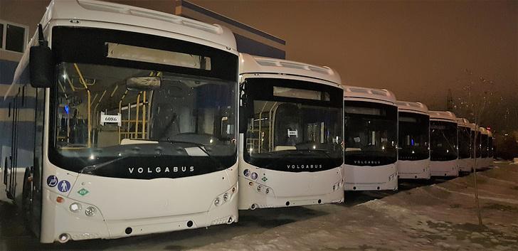 11 газомоторных автобусов отправлены в Липецк