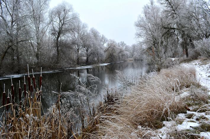 Река Бульбин в Волгоградской области до расчистки русла и берегов