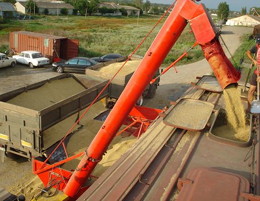 Погрузка зерна на экспорт в сети ОАО «РЖД» увеличилась почти вдвое и превысила 1,5 млн тонн