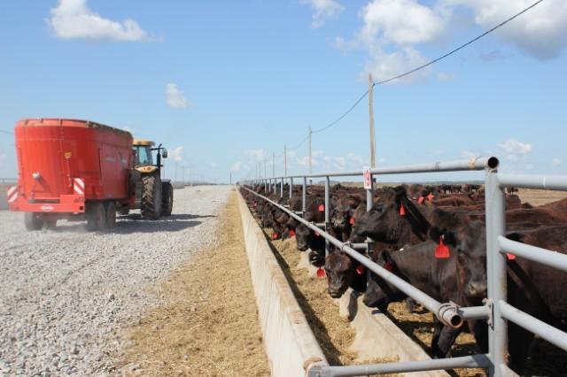 ВЭБ выдал кредит в 425 миллионов долларов мясной компании из Брянска