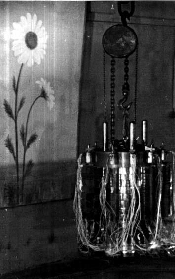 Рис.7 Реактор «Ромашка»