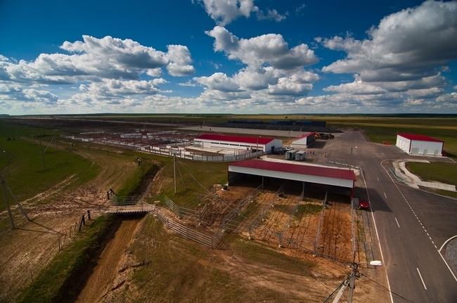 в рамках реализации первого этапа проекта АПХ «Мираторг» по производству говядины на территории Брянской области завершено строительство 28 ферм для содержания КРС