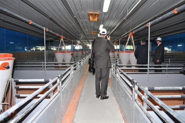 открытие свинокомплекса состоялось в мае 2011 года