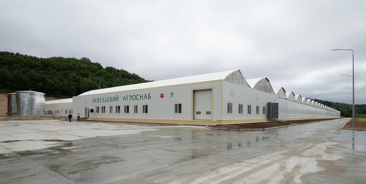 В Невельском районе Сахалинской области открыли новый тепличный комплекс