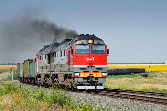 (С) фото Айдаров Д (https://trainpix.org)