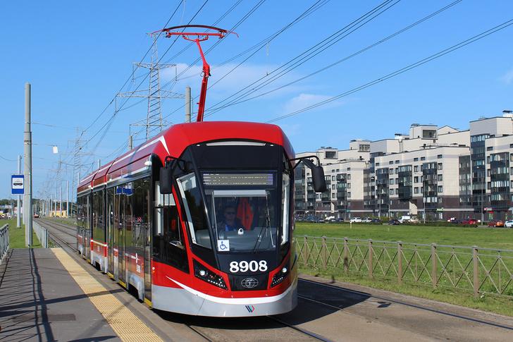 Санкт-Петербург, 71-931М «Витязь-М» № 8908. Заводской номер 302. Построен 07.2019