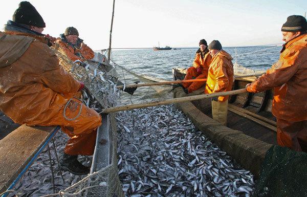 Строительство рыбопромысловых судов и организация финансирования