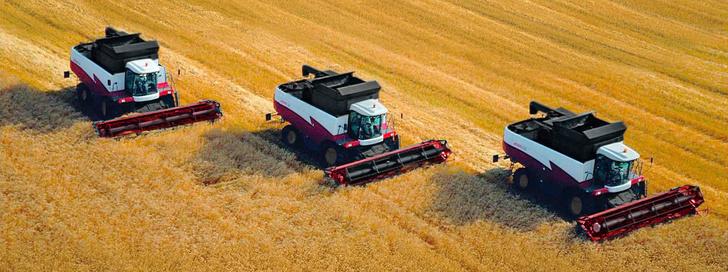 Минсельхоз США назвал Россию серьёзным конкурентом ЕС в сфере экспорта пшеницы