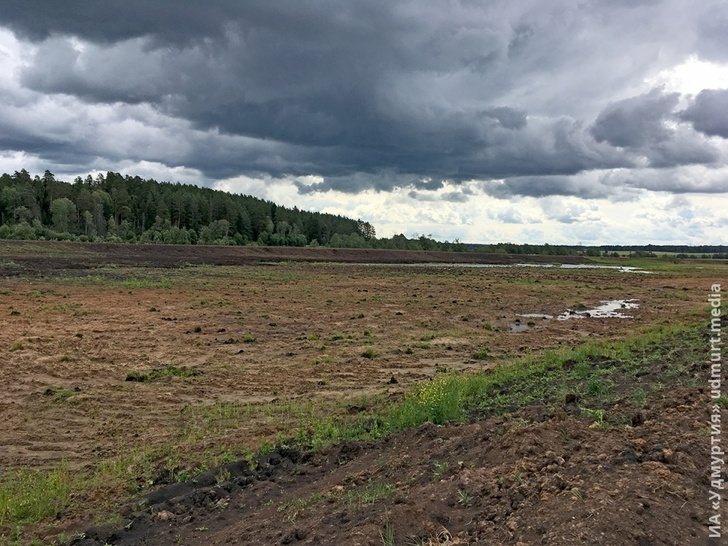 Строительство Искусственного водоема в Алнашском районе
