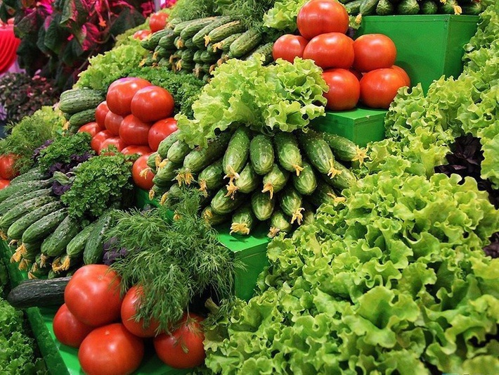 В РФ увеличивается валовый сбор тепличных овощей