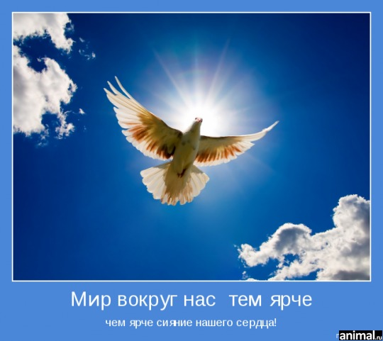 http://animal.ru/i/usersupload/41_d2fc6807fb.png