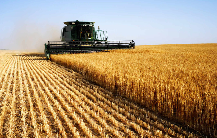 Картинки по запросу сельское хозяйство