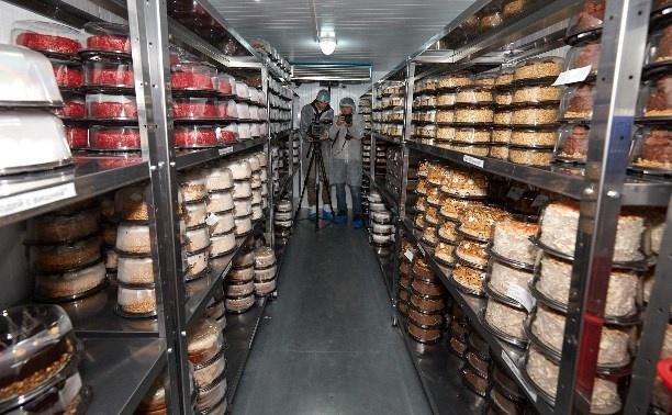 В Южно-Сахалинске открылся новый кондитерский цех