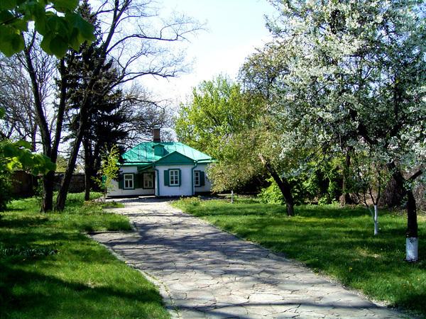 Путь в город Таганрог проходит по трассе через поля пшеницы, кукурузы и цветущих подсолнухов, через балки и ковыльные...