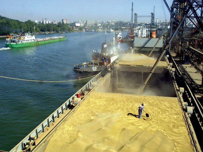 Экспорт зерна через порты РО в августе 2014г. вырос на 20,2%